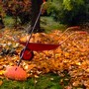 gallery/img-mini-Travaux_Automne_Ramassage_Feuilles